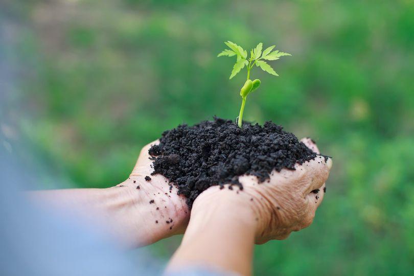 Rolnictwo – zmiany klimatu